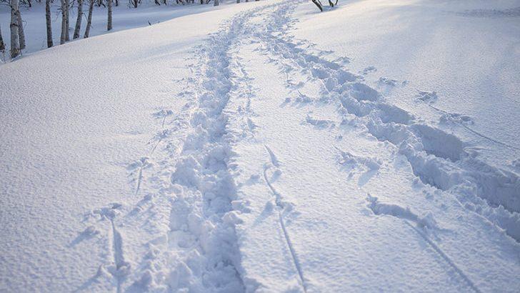 大雪時にタイヤチェーンが義務化される区域は?福井県など北陸多め!